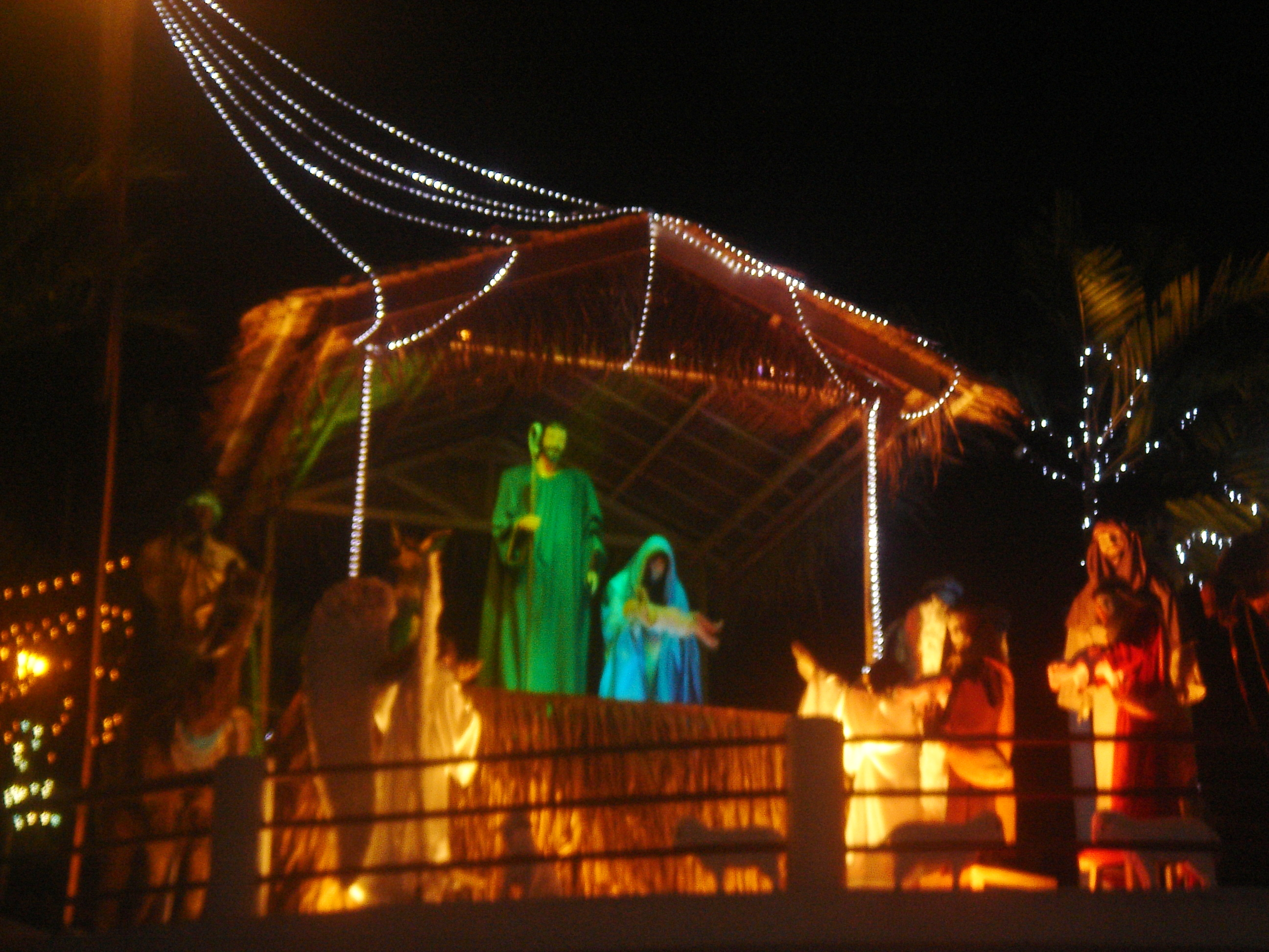 sacred heart parish christmas display